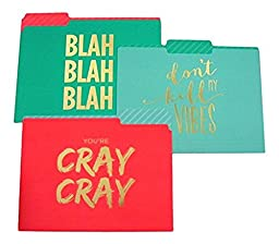 Cray Cray, Dont Kill My Vibes, Blah Blah Blah Gold Letters File Folders