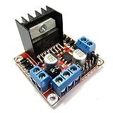 RioRand RRQWEUAOAPQ Dual H-Bridge Motor Driver Module (for Arduino Stepper Control Smart car Robot Power, L298N)