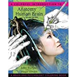 Anatomy of the Human Brain 2nd (second) Edition byPinel