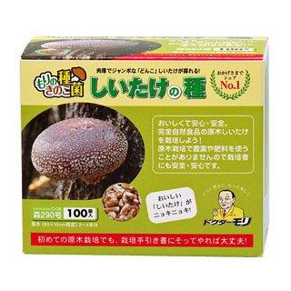 椎茸種駒 【しいたけ種駒100個】