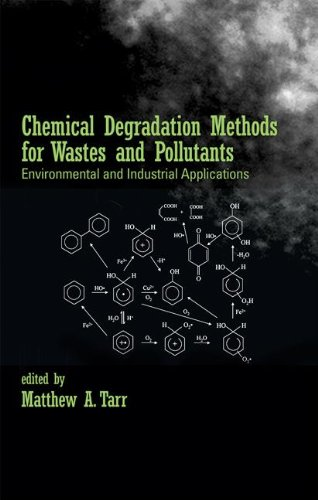 INDUSTRIAL POLLUTION AND ENVIRONMENTAL DEGRADATION ...