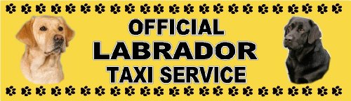 official-labrador-taxi-service-dog-car-sticker-featuring-the-black-yellow-labradors