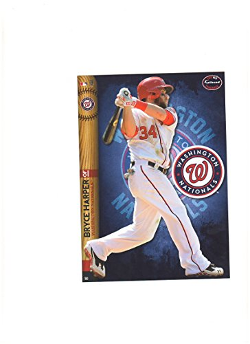 Washington Nationals Mini Felt Pennant & Bryce Harper Mini Fathead 2014