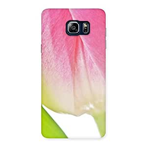 White And Pink Back Case Cover for Galaxy Note 5