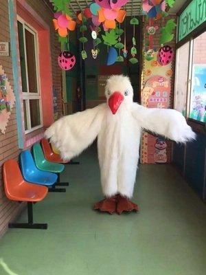 seagu (The Seagull Costumes)