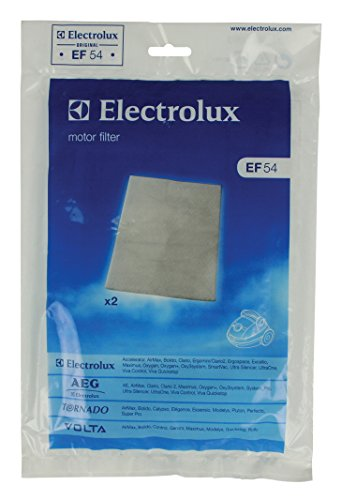 Electrolux Ef54 Vacuum Cleaner Motor Filter Picture