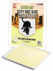 JT Eaton 100N Stick-Em City Rat and Mouse Peanut Butter Scented Glue Trap, Double Trap 2-Pack