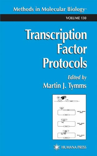 Transcription Factor Protocols (Methods In Molecular Biology)