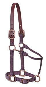 Weaver Leather Breakaway Copper Creek Adjustable Chin and Throat Snap Halter, Average, Wildflower