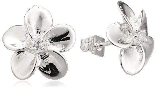 Imagen principal de Dew SP38827CZ006 - Pendientes de mujer de plata con circonitas