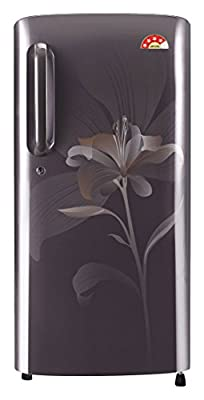 LG GL-B241AGLT.DGLZEBN Direct-cool Single-door Refrigerator (235 Ltrs, 5 Star Rating, Graphite Lily)