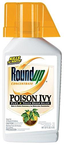 Roundup Poison Ivy Plus Tough Brush Killer Concentrate, 32-Ounce (Brush Killer Concentrate compare prices)