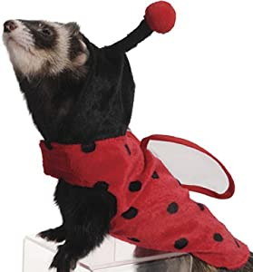 Marshall Pet Products Ladybug Costume for Ferrets