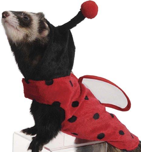 Marshall Ferret Ladybug Costume