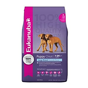 Eukanuba Large Breed Puppy Dry Food 16.5 lb bag