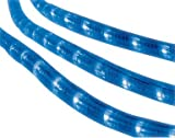 Celebrations Rope Lights 216 Blue Lights 18' Pvc