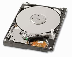Toshiba 320GB Internal Bare Hard Drive MK3265GSX
