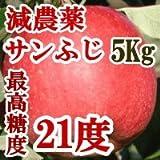 サンふじりんご約5Kg(約16-20玉)減農薬、高級有機肥料と総合ミネラル肥料活用、高糖度、最高糖度21度