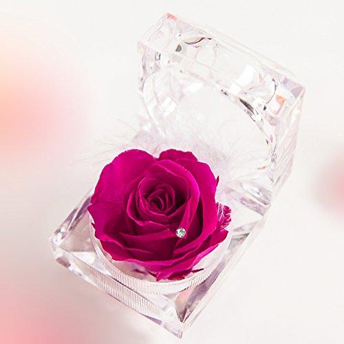 TEATSIGHT(ティートサイト) プリザーブドフラワー ギフト 枯れないお花 「バラ&スワロフスキー&羽根のジュエリーボックス」 ミニアレンジメント ホットピンク