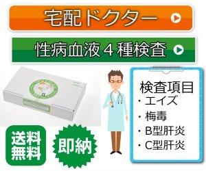 性病検査キット 宅配ドクター(性病血液4種類検査)エイズ・梅毒・B型肝炎C型肝炎