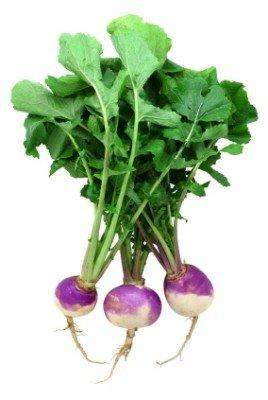 Rainbow Seeds® 15,000+ Organic Purple Top Turnip Seeds Wholesale Lot