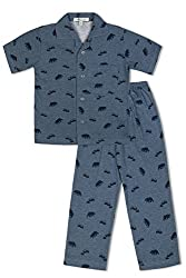 GreenApple Boys Organic Cotton Bear Print Pyjama Set (FVGA050, Blue, 2-3 Years)
