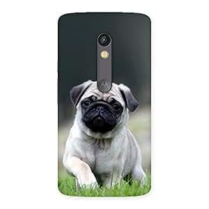 Impressive Pug Dog Grass Multicolor Back Case Cover for Moto X Play