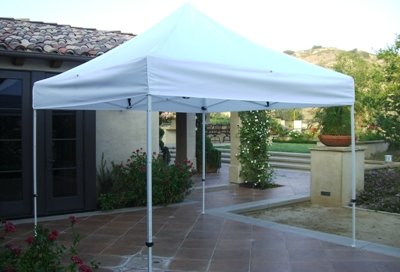 Ch&ion Replacement top for Ez Up 10 x 10 White & EZ UP CANOPY REPLACEMENT PARTS - EZ UP CANOPY