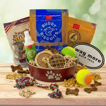 Holiday Barkeru0027s Design Healthy Gift Basket Delight for Dogs & Gift Baskets | Pooch Presentz