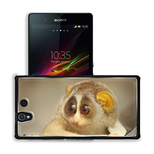 Baby Sunda Slow Loris Animal Sony Xperia Z 5.0 C6603 C6602 Snap Cover Premium Aluminium Case Customized Made To Order Support Ready 5 4/8 Inch (140Mm) X 2 7/8 Inch (73Mm) X 7/16 Inch (11Mm) Luxlady Sony Xperia Z Cover Professional Xperia_Z Cases Touch Acc front-1053897