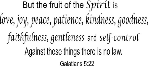Galatians 5:22, Vinyl Wall Art, the Fruit of the Spirit Is Love, Joy, Peace, Patience, Kindness, Goodness, Faithfulness, Gentleness Self-control Against These Things No Law (Fruits Of The Spirit Wall Art compare prices)