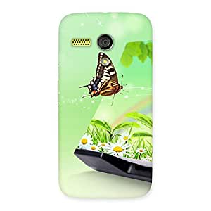 Digital Butterfly Print Back Case Cover for Moto G
