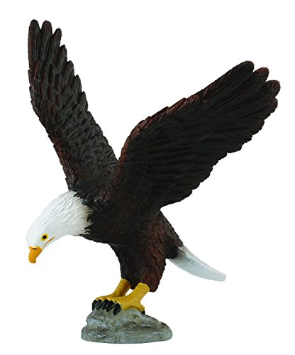 CollectA American Bald Eagle Figure - 1