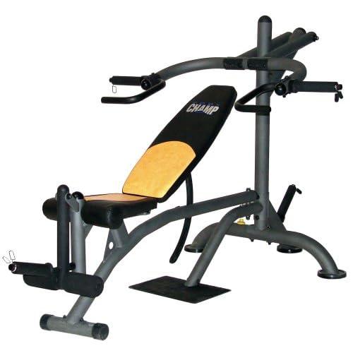 Amazon.com : Body Champ LB2600 Deluxe Leverage Bench : Adjustable