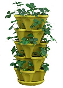 Buy indoor plants gifts - Mr Stacky 5 Tiered Hanging and Stacking Indoor Outdoor Vertical Strawberry Planter - Learn How to Grow Organic Strawberries Easy with these cool Tuscany Plastic Containers - Great Garden Planting Pots - Planters Also Used for Herbs Peppers Flowers Tomatoes Succulents Green Beans - Free Growing Gardening Plant Tips and Ideas - Great Mothers Day Gifts!