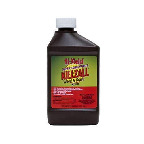 voluntary-purchasing-group-fertilome-33691-killzall-weed-and-grass-killer-16-ounce-super-concentrate