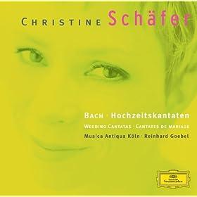 "Johann Sebastian Bach: Cantata, BWV 210 ""O holder Tag, erw�nschte Zeit"" - 5. Recit: So glaubt man denn, da� die Musik verf�hre"