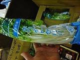 Oishiina Shop ホワイトセロリ  1ケース  1Kg前後 10パック前後