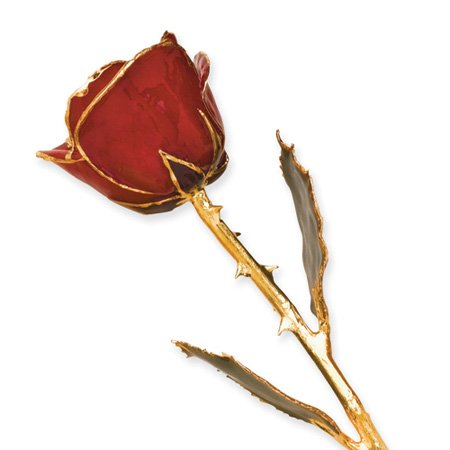 Long Stem Dipped 24k Gold Trim Red Rose In Gold Gift Box