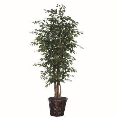 Vickerman 6-Feet Artificial Ficus Executive Tree In Decorative Container