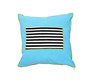 Baby Blue And Brown Throw Pillows : Amazon.com : Kids Throw Pillow- Aqua Blue : Baby