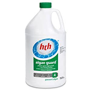 Arch chemical hth 61119 algae guard 1 gallon for Garden pool chemicals