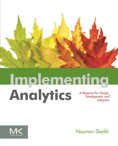Implementing Analytics: A Blueprint for Design, Development, and Adoption (The Morgan Kaufmann Series on Business Intell