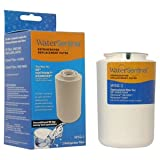 Water Sentinel WSG-1 Replacement Fridge Filter ~ Water Sentinel