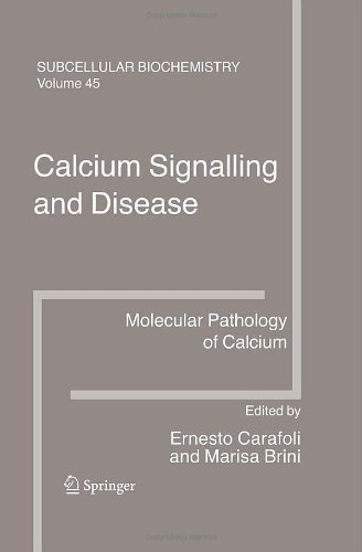 Calcium Signalling And Disease: 45 (Subcellular Biochemistry)