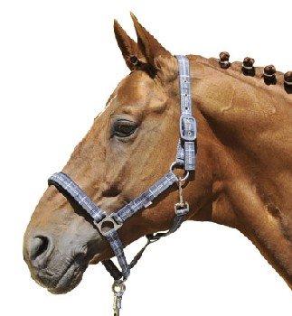 HKM Halfter Combo, Pony, dunkelblau