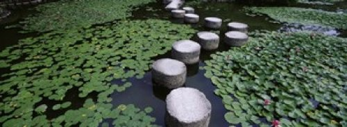 panoramic-images-water-lilies-in-a-pond-helan-shrine-kyoto-japan-photo-print-4572-x-1778-cm