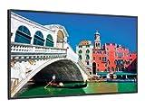 NEC Multisync V423 LCD Monitor