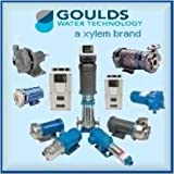 Sale cheap Goulds V09A12A2BB2S Motor With Big Deal