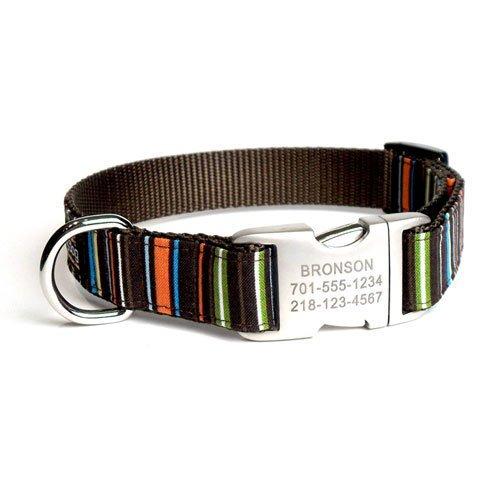 b88729796b5 Designer Dog Collar With Personalized Buckle Bronson - David R. Smithike